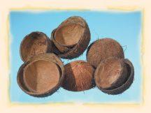 kókuszdió héj