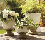 vázák, kaspók